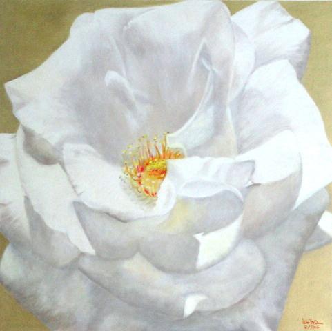 Golden Moonlight (60 x 60)