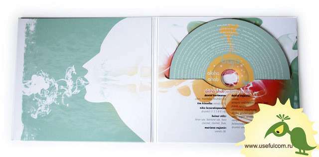 № 170 – Диджифайл (DigiFile) CD формат