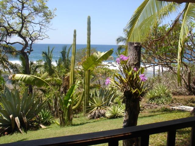 Garten und Pazifik