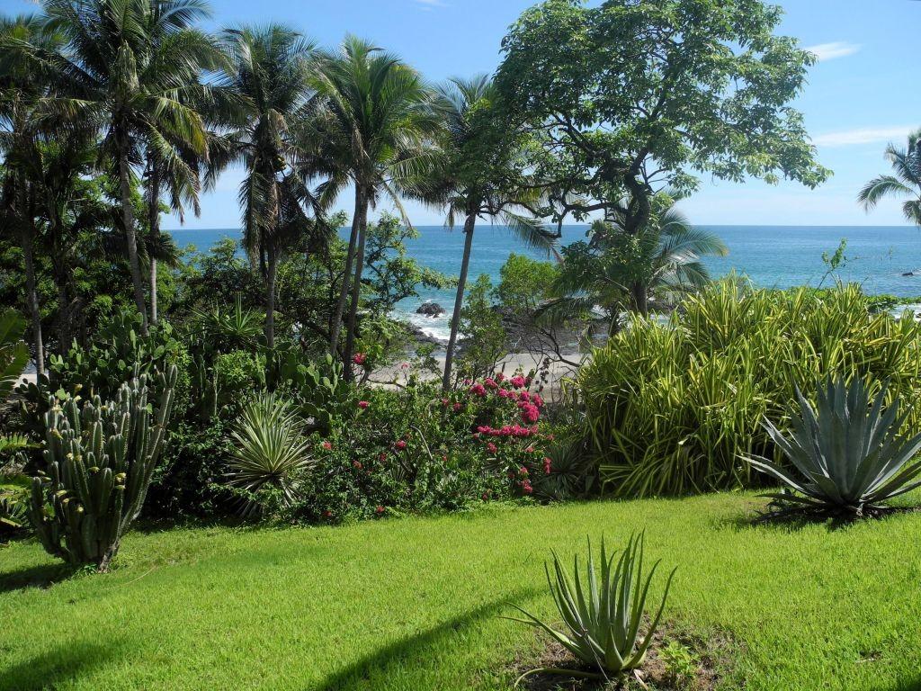 Blick auf den Pazifik von unserem Haus