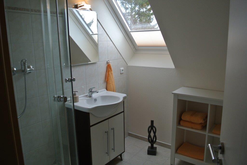 Ein Badezimmer mit Dusche (erhöhter Einstieg) ...