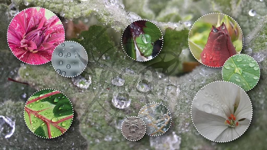 Collage-Wassertropfe