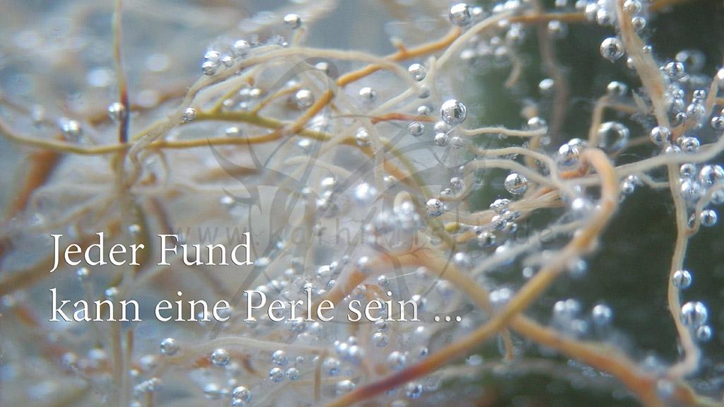 Perlenfund