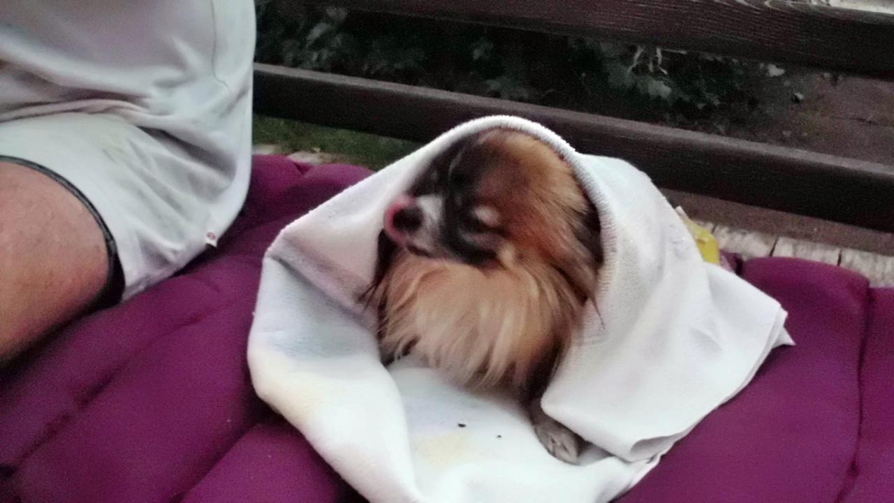 Hey, ist doch auch kalt!!!