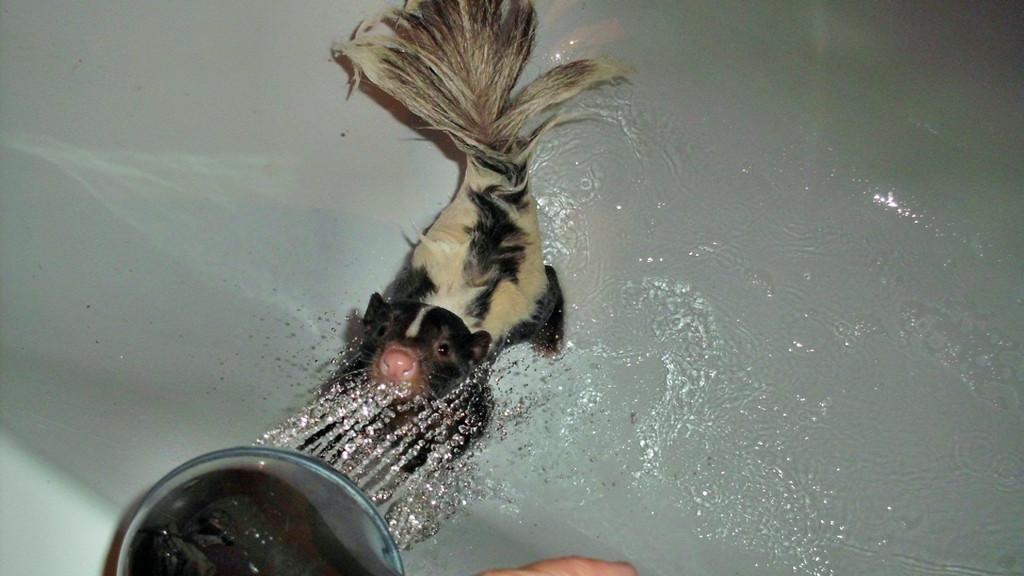 Ich fang das Wasser!!!