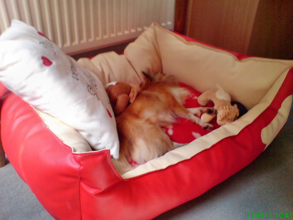Mein eigenes Sofa