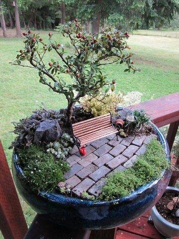 Миниатюрный и сказочный  сад   дома. Бонсай, миниатюра, комнатные растения, кукольный домик, цветы. флора арт,