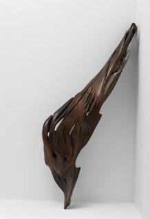 S1100 · Tropical Driftwood#sculpture#bowl#coffeetable#woodworking#interiordesign#woodsculptures#art#woodart#wooddesign#decorativewood#originalartwork#modernwoodsculpture#joergpietschmann#oldwood