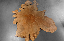T0168 · American Maple Burl