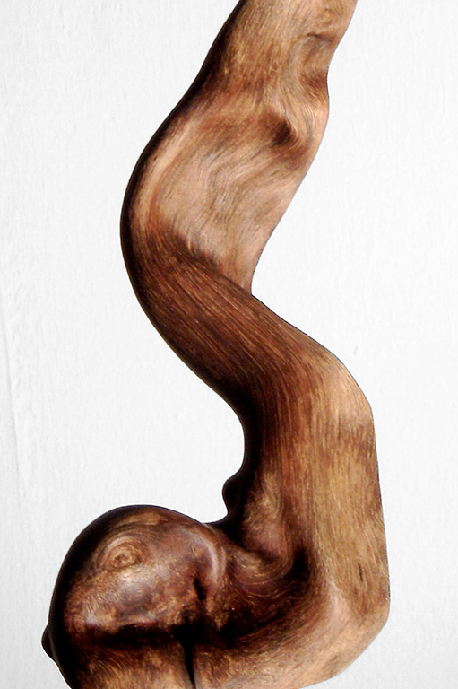 Sculpture • Bush Wood · S0125