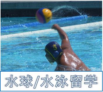 水球留学 水泳留学