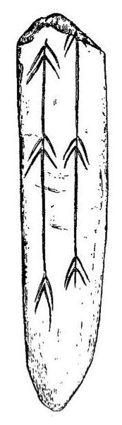 Image: René de Saint-Périer