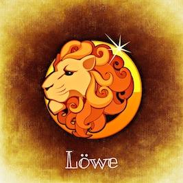 Wie zeigt ein Löwe Mann Interesse
