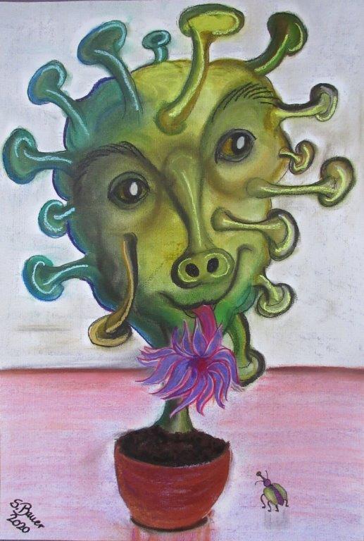 cactus coronasus, Pastellkreide auf Karton 50 x 70, Silvia Bauer