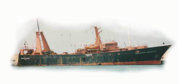 Motopesca oceanico AMORUSO QUARTO