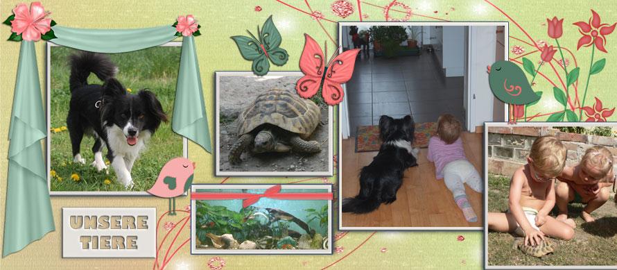 Tageskinder von der Tagesmutter Susanne und ihre Tiere