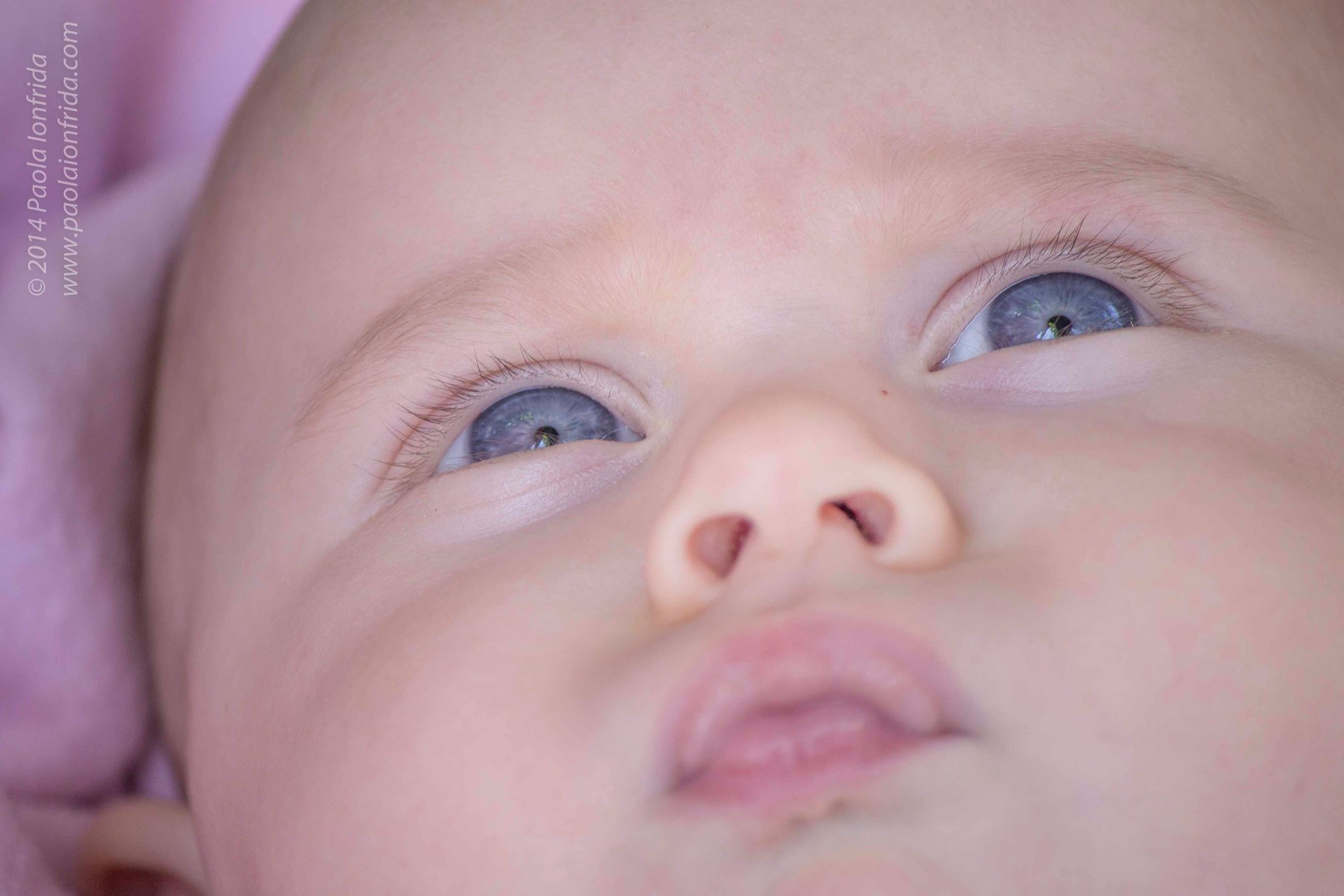 Occhi celesti