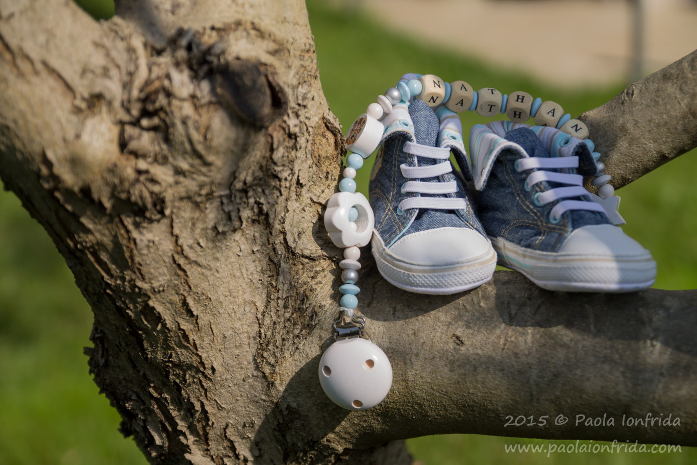 Little shoes on olive tree
