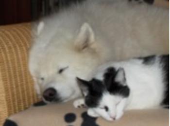 Siberia und Tonja genießen das Zusammensein