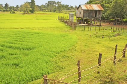 Naturidylle im Kambodschanischen Hinterland.