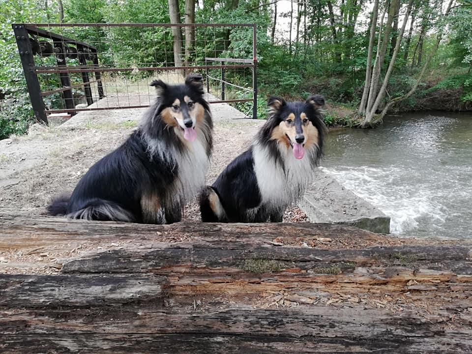 Coco und Emba
