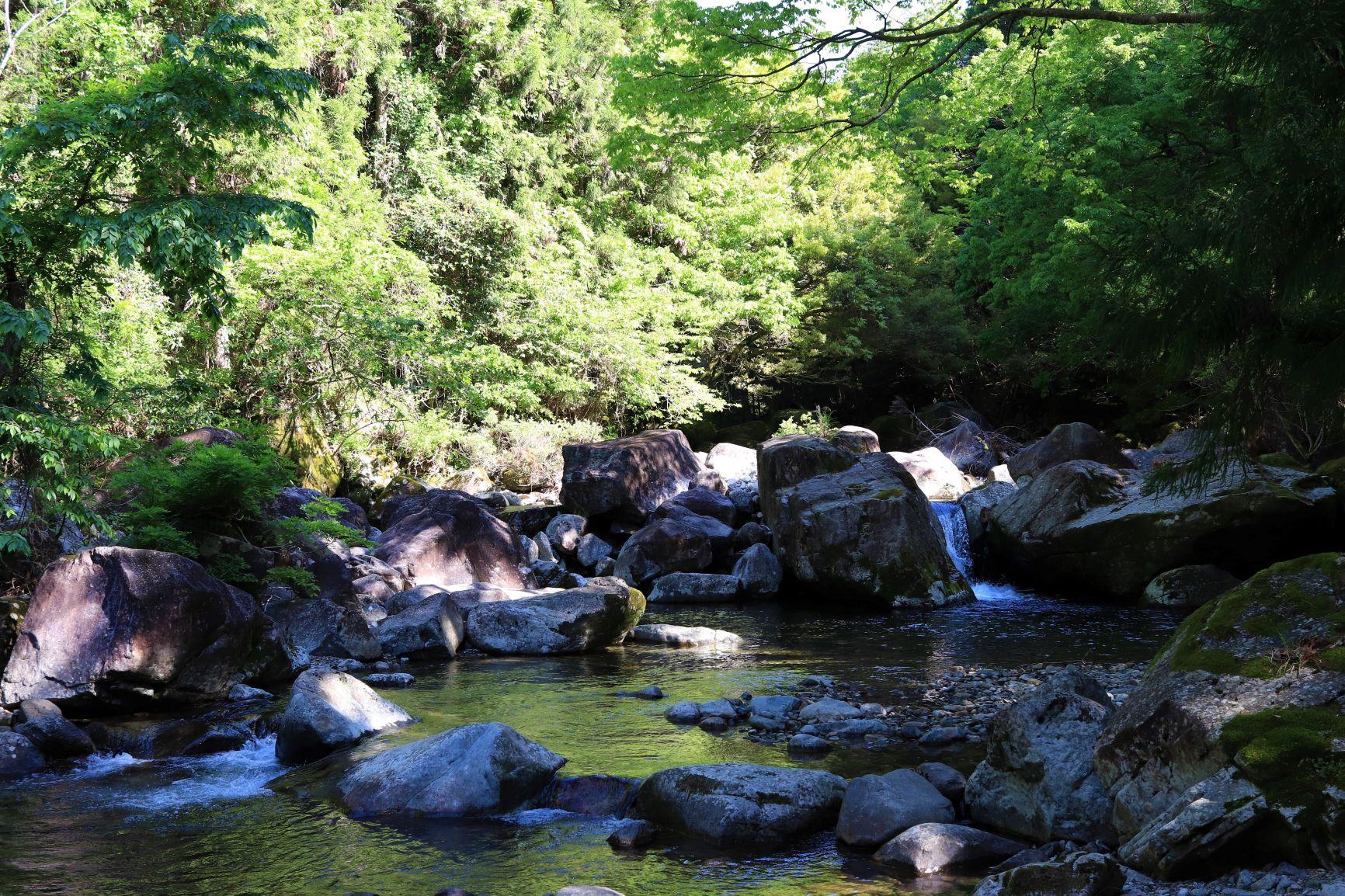 片知渓谷の風景
