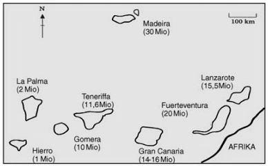 (Storch,Welsch,Wink;2007;S.289;Evolutionsbiologie)
