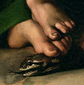 Lotta tra Donna e serpente