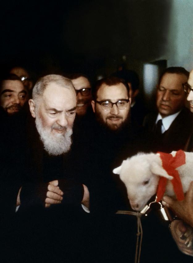 Padre Pio e l'Agnello