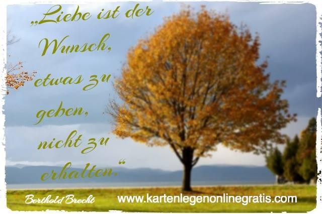 Brecht Spruch Liebe