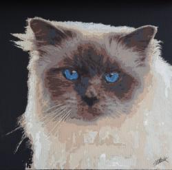 Peinture contemporaine par le peintre erik black représentant le chat de fabrice - acrylique sur toile