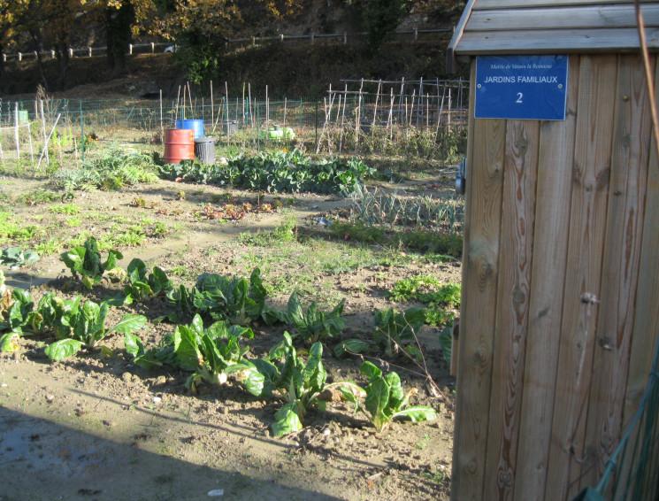 La visite des jardins familiaux de Valréas avec la mairie de Nyons