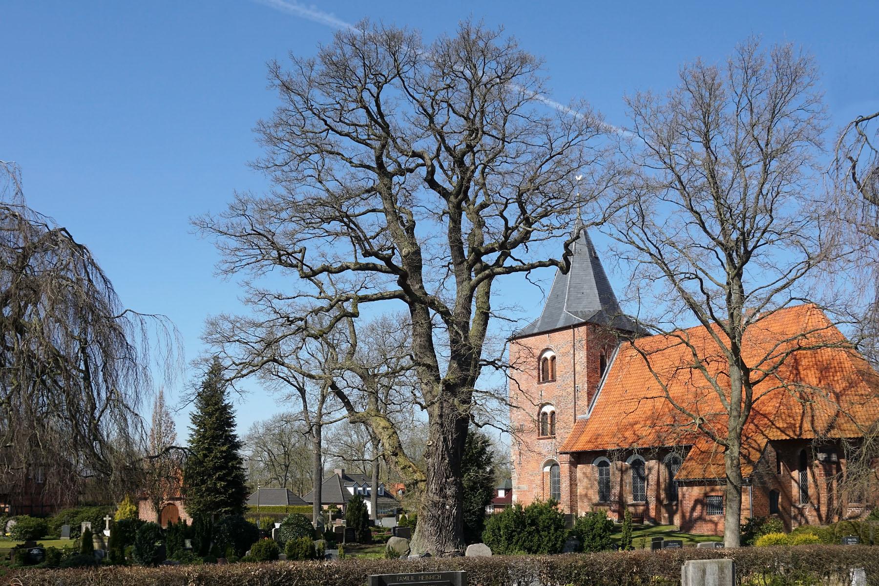 Die Eiche Lübeck
