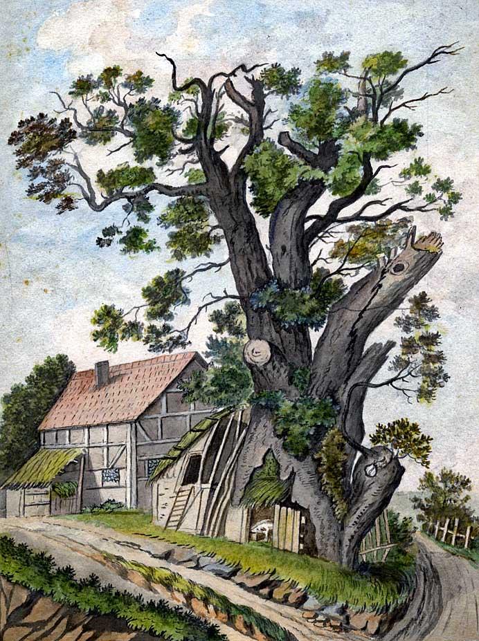Dagobertseiche in Dagobertshausen, um 1830