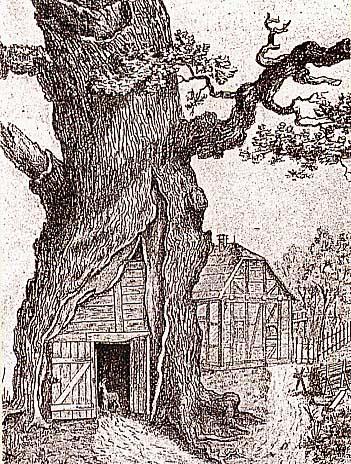 Dagobersteiche in Dagobertseiche, Friederich Kanngießer, 1909