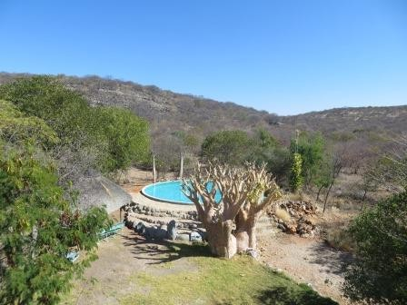Pool auf der Otjitotongwe Cheetah Farm