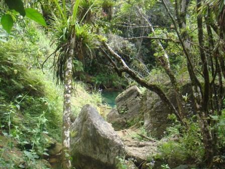 Eine Lagune im Dschungel...