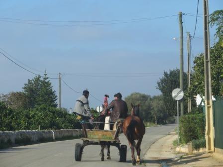 Impressionen von Portugals Inland