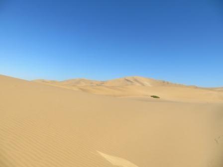 wunderschöne Dünenlandschaft vor Swakopmund