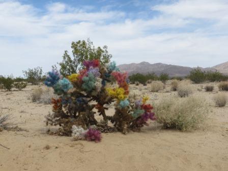 Unterwegs in der Wüste....