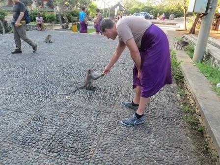 Jan beim Affen füttern