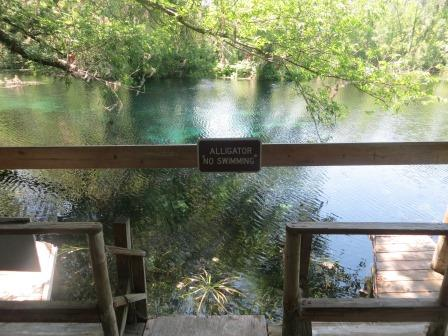 Impressionen aus dem Silver Springs State Park