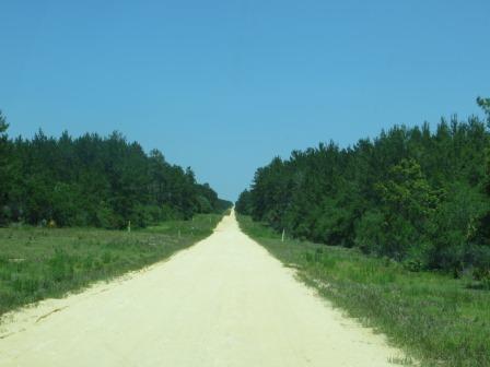 Der Black Bear Scenic Trail