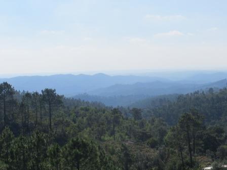 Ausblick vom Gipfel des Foia