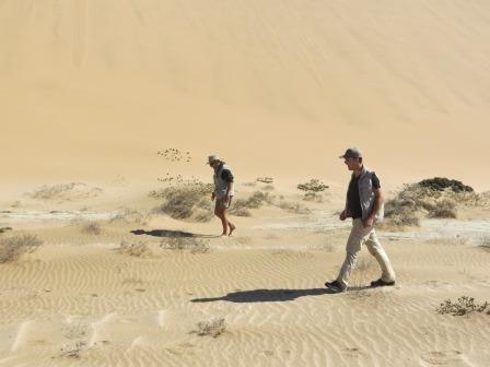 Auf der Suche nach weiteren Wüstenbewohnern