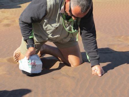 Eisenrückstände im Sand
