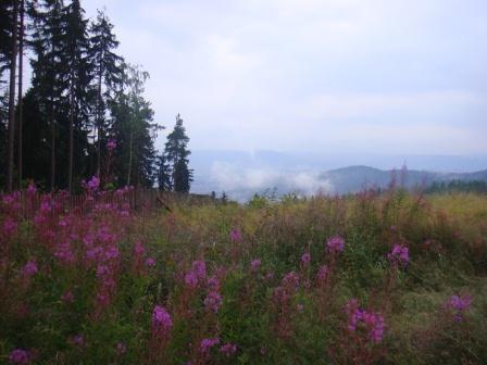 Campingplatz Vitkova Hora
