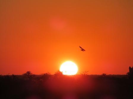 Etosha Nationalpark - Sonnenuntergang im Namutoni
