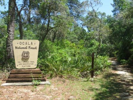 Ankunft im Ocala National Forest