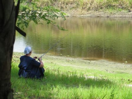 Impressionen vom Myakka River State Park